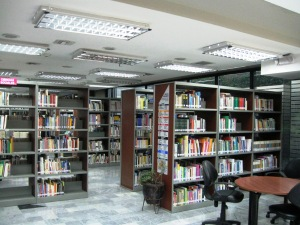 Long shot of the library