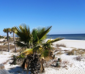 Blissful Biloxi beach